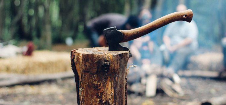 Vente de bois de chauffage 94 : comment se faire la livraison ?